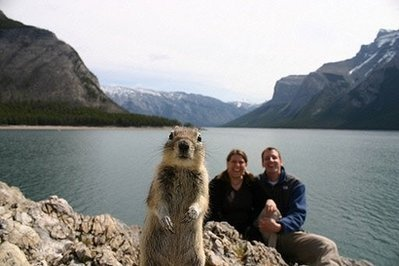 Giant Squirrell